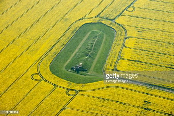 West Kennet Long Barrow Avebury Wiltshire 2015 The neolithic burial mound surrounded by a field of flowering oilseed rape