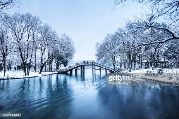 west lake in winter, hangzhou,china - west lake hangzhou stock pictures, royalty-free photos & images