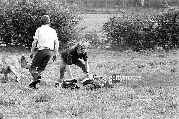 West Midland Safari and Leisure Park located in Bewdley Worcestershire England Lion attack 5th May 1976