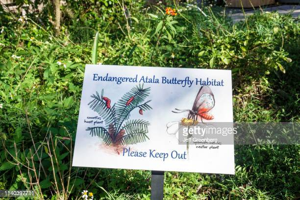 West Palm Beach Grassy Waters Nature Preserve endangered Atala butterfly habitat sign