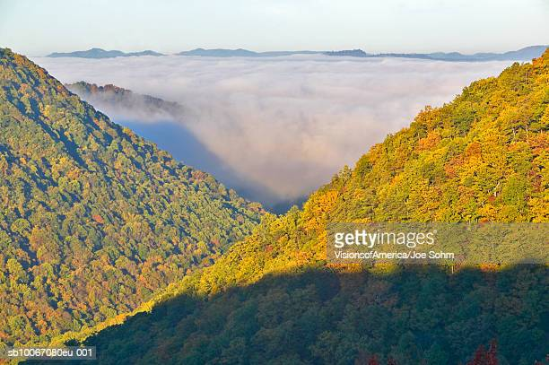 USA, West Virginia, Babcock State Park, morning fog at sunrise in autumn mountains