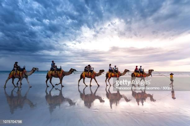 western australia - francesco riccardo iacomino australia foto e immagini stock