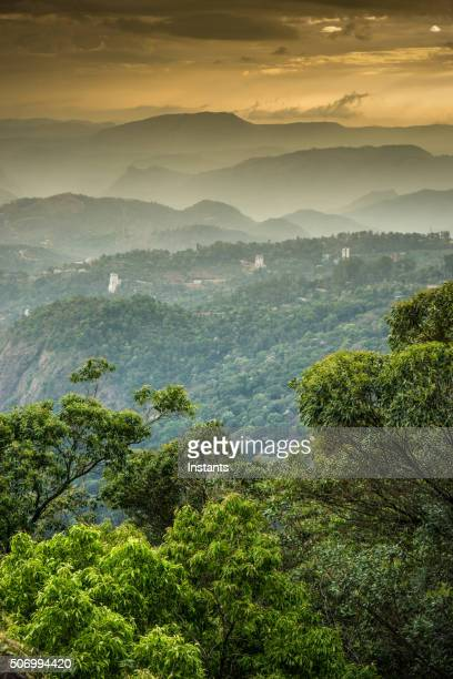 western ghats mountains - vertical stock pictures, royalty-free photos & images