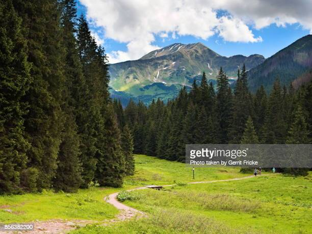 Western Tatra mountains (Poland, Zakopane)
