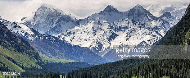 western tian shan mountains, xiate ancient trail, xinjiang china - tien shan mountains stock pictures, royalty-free photos & images