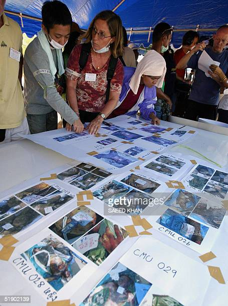 Western tourists along with Thai residents look at pictures for their missing loved ones at a makeshift relief camp in Khao Lak 30 December 2004 The...