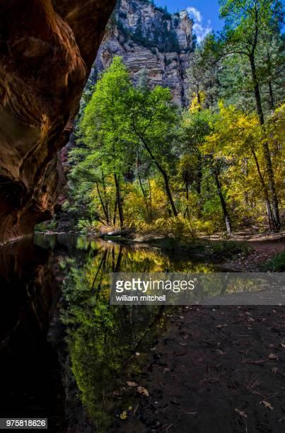 westfork trail az - brook mitchell foto e immagini stock