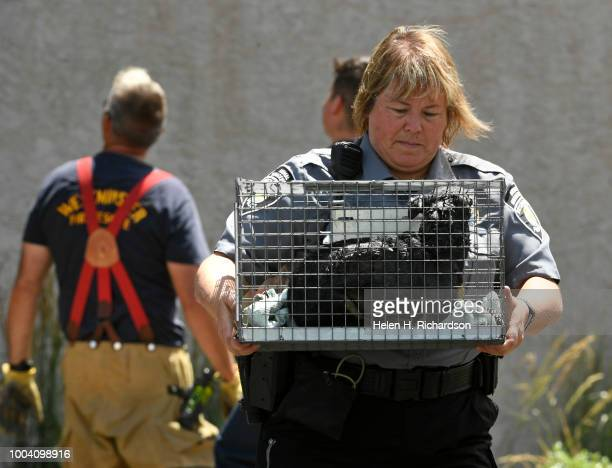 Westminster animal control officer Chris Branigan carefully carries a small Chihuahua to her vehicle after it was rescued by firefighters from a...