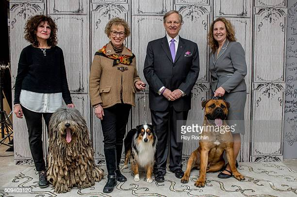 Westminster Kennel Club Dog Show host David Frei discusses the upcoming 140th Show with three dogs that will be in the competition at AOL Studios In...