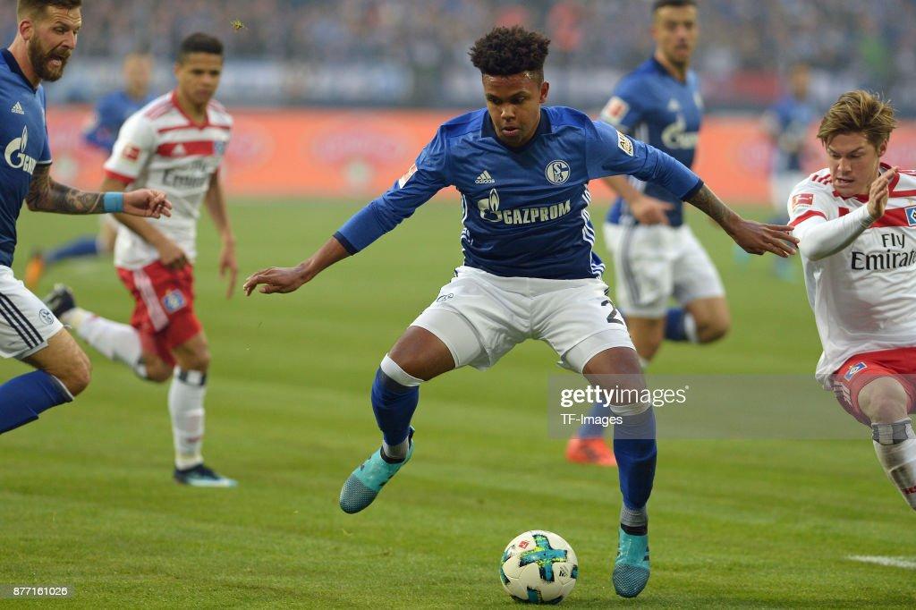 FC Schalke 04 v Hamburger SV - Bundesliga : News Photo