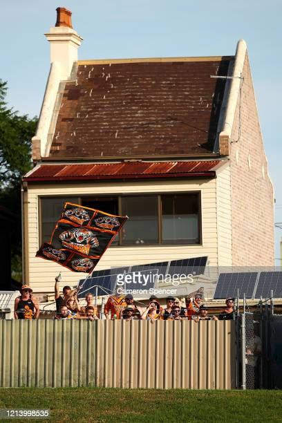 Wests Tigers supporters celebrate as they watch over the fence of a neighboring property during the round 2 NRL match between the Wests Tigers and...