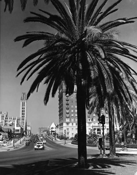 Westward view of Wilshire Boulevard, Los Angeles, California,...