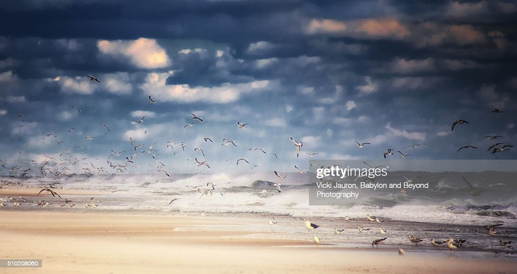 Wet And Wild Beach Scene At Robert Moses State Park Long Island NY Stock
