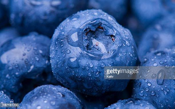 Wet Blueberry Closeup