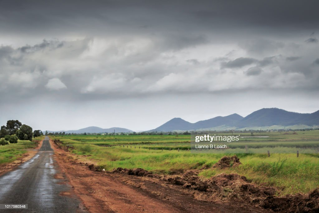 Wet Country Road : Stock Photo