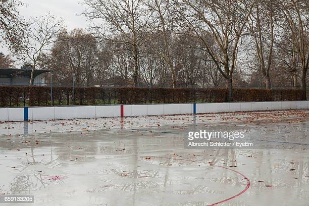 wet court during autumn - albrecht schlotter stock photos and pictures