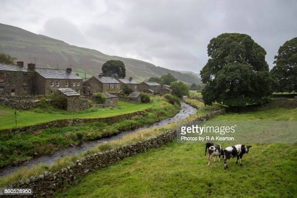 Wet day in Thwaite, Upper Swaledale, Yorkshire Dales