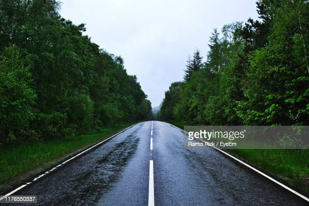 wet empty road amidst trees against sky - road stock pictures, royalty-free photos & images