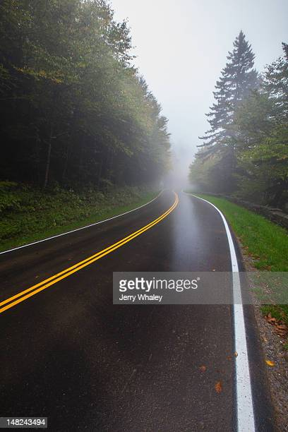 wet foggy road - clingman's dome fotografías e imágenes de stock