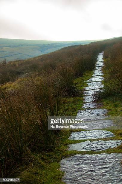 Wet moorland footpath