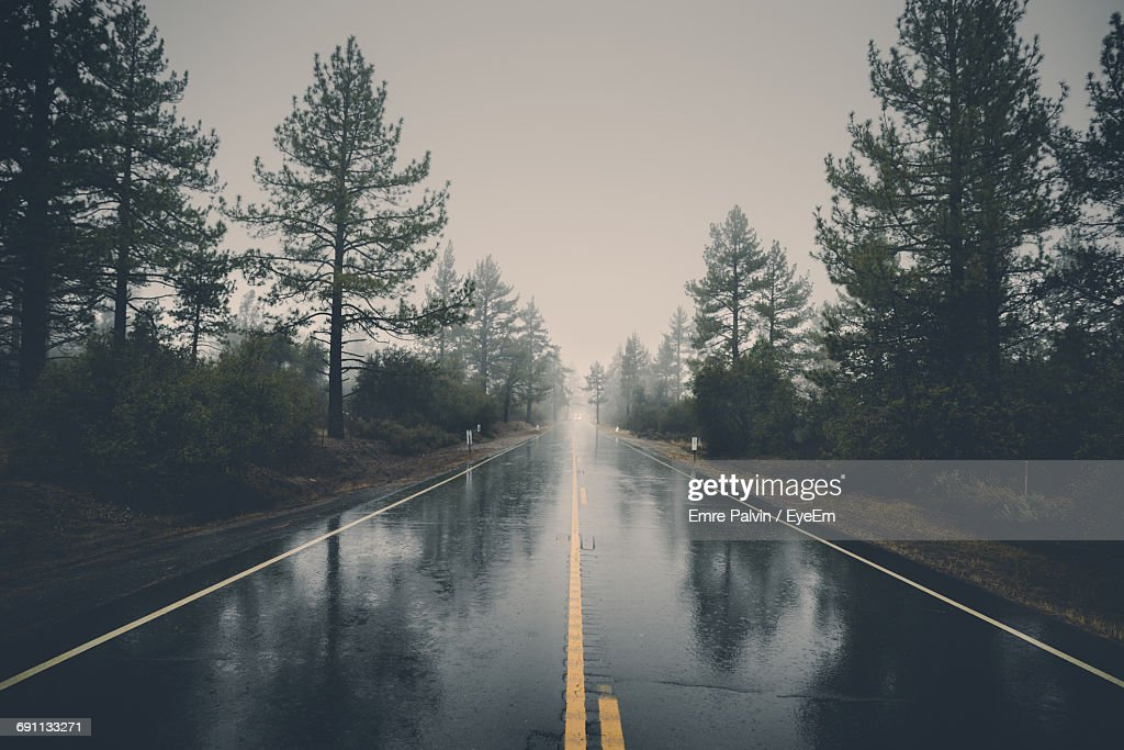 Wet Road Amidst Trees Against Sky During Monsoon : ストックフォト