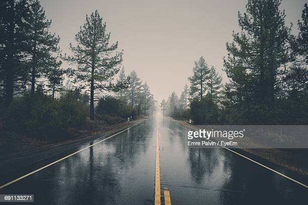 wet road amidst trees against sky during monsoon - bagnato foto e immagini stock