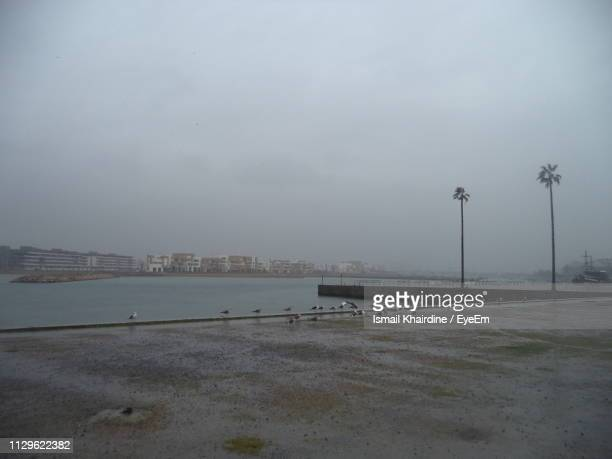 wet street by sea against sky in city - ismail khairdine stock photos and pictures