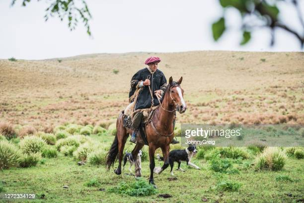 nasser junger gaucho reitet im regen in traditioneller kleidung - pampa stock-fotos und bilder