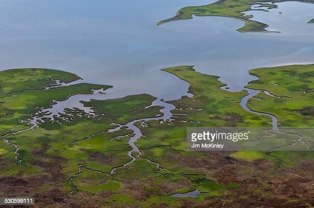 wetland dauphin island, alabama aerial view - golfküstenstaaten stock-fotos und bilder
