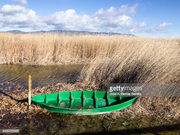 Wetland surrounded with reed-grass and with water, with a boat of wood to oars in the shore. Tablas de Daimiel, National Park