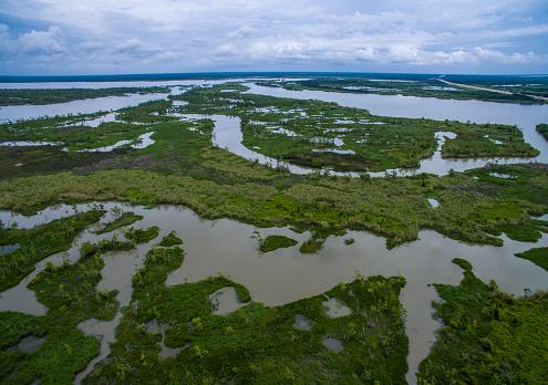 Wetlands Marsh Delta near Texas Louisiana Border 589962230
