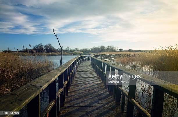 Wetlands of Tablas de Daimiel with wooden walkway
