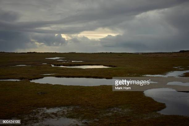 Wetlands on Terschelling, West Frisian Islands, Netherlands