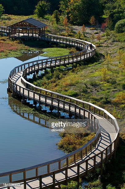 wetlands pedestrian walkway - arkansas stock photos and pictures