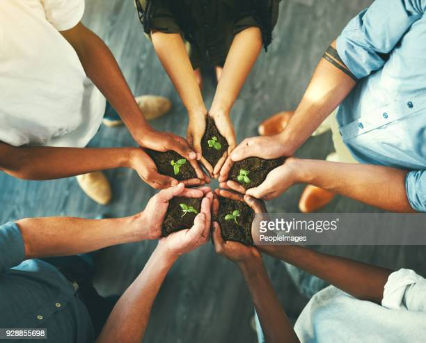 we've each got our own dreams to nurture - responsible business stock photos and pictures