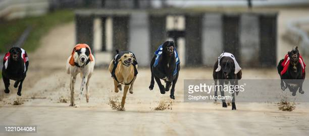 Wexford , Ireland - 18 June 2020; Greyhounds during The Slan Abhaile Five-2-Five A3 Stakes at Enniscorthy Greyhound Stadium in Wexford. Greyhound...