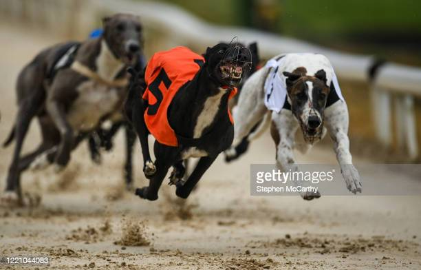 Wexford , Ireland - 18 June 2020; Gunner Rosa, orange coat, and Some Product, right, during The TrackSide Diner Five-2-Five Stakes at Enniscorthy...