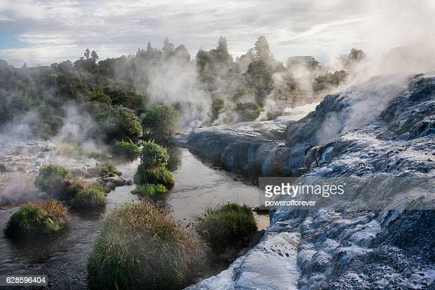 whakarewarewa thermal park in rotorua, new zealand - hot spring stock pictures, royalty-free photos & images