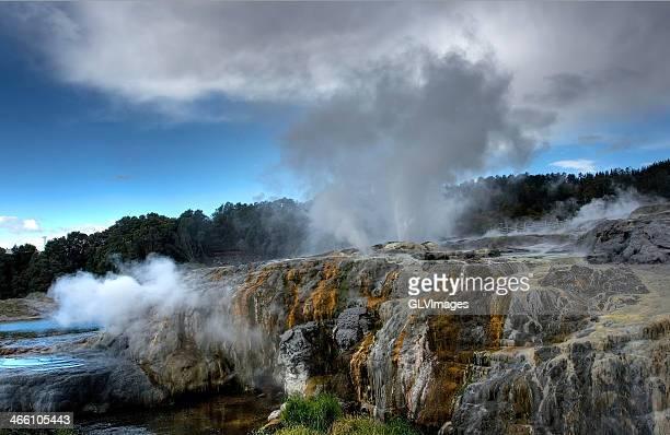 Whakarewarewa Thermal Valley