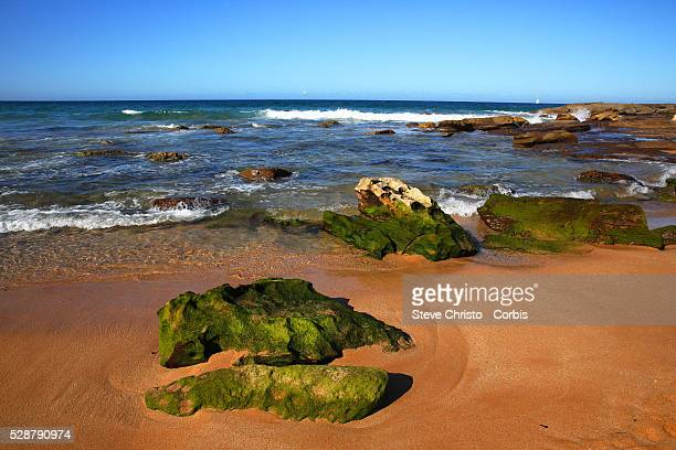 Whale Beach is a northern beachside suburb of Sydney in the state of New South Wales Australia Whale Beach is located 40 kilometres north of the...