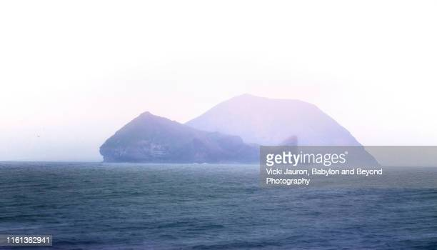 whale like rock formation near heimaey island, iceland - rookery stock pictures, royalty-free photos & images