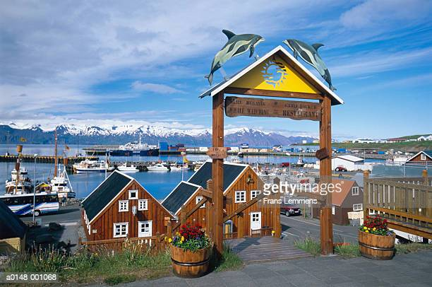 whale watching center - husavik stock photos and pictures