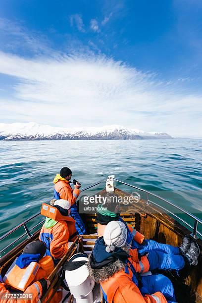 whale watching tour ship, arctic sea, húsavík - husavik stock photos and pictures