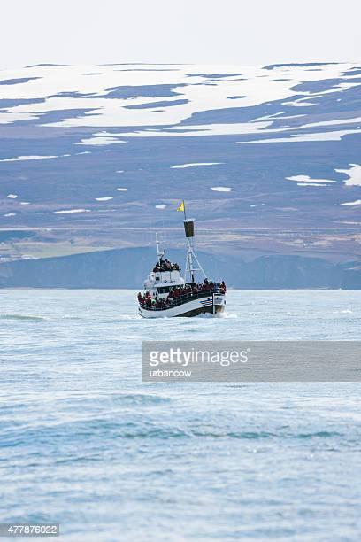 Whale watching tour ship, Arctic Sea, Húsavík