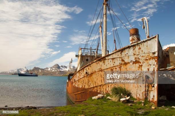 Whaling Ship at Grytviken