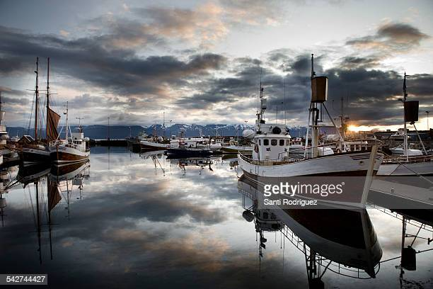 whaling ships in Iceland