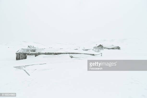 whaling station - houses in antarctica stock pictures, royalty-free photos & images