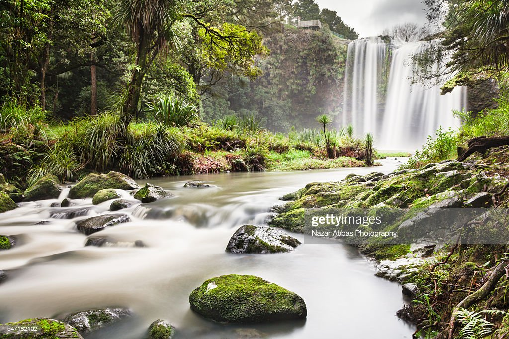 Whangarei Falls Grand View. : Stock Photo