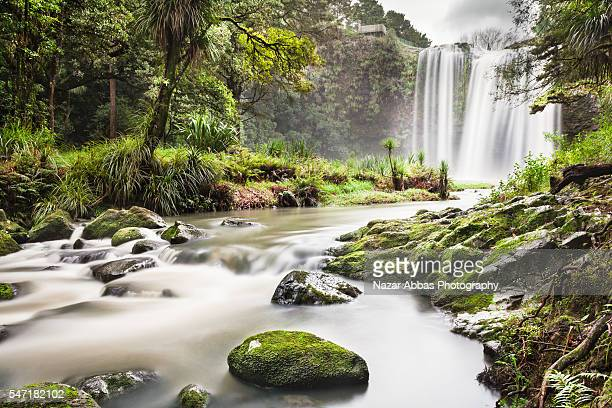 whangarei falls grand view. - northland new zealand stock pictures, royalty-free photos & images