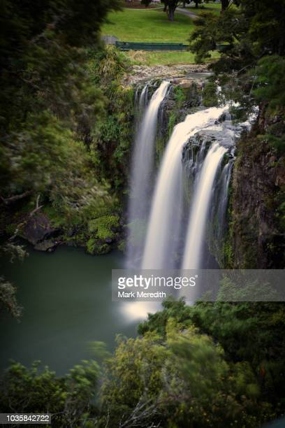 whangarei falls in northland - whangarei heads stock pictures, royalty-free photos & images